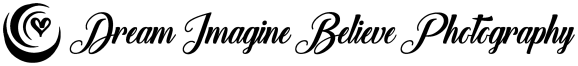 DIB_Logo_Black